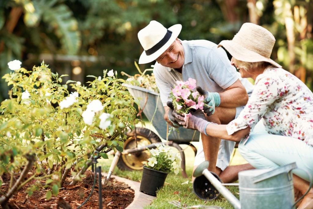Gardening Photo Credit: Kupicoo (iStock).