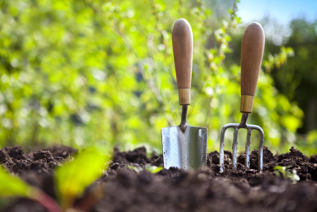Gardening Tools Photo Credit: cjp (iStock).