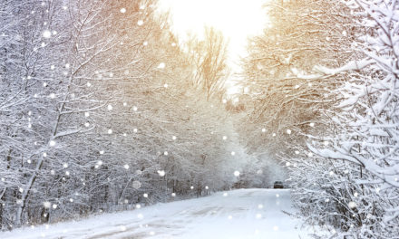 8 Ways to Winterize Your Car