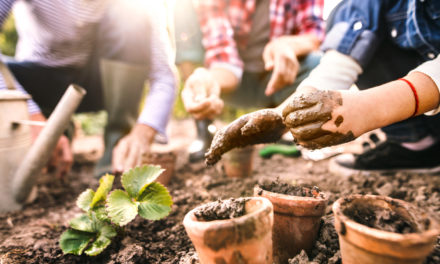5 Simple Ways to Improve Soil Organically