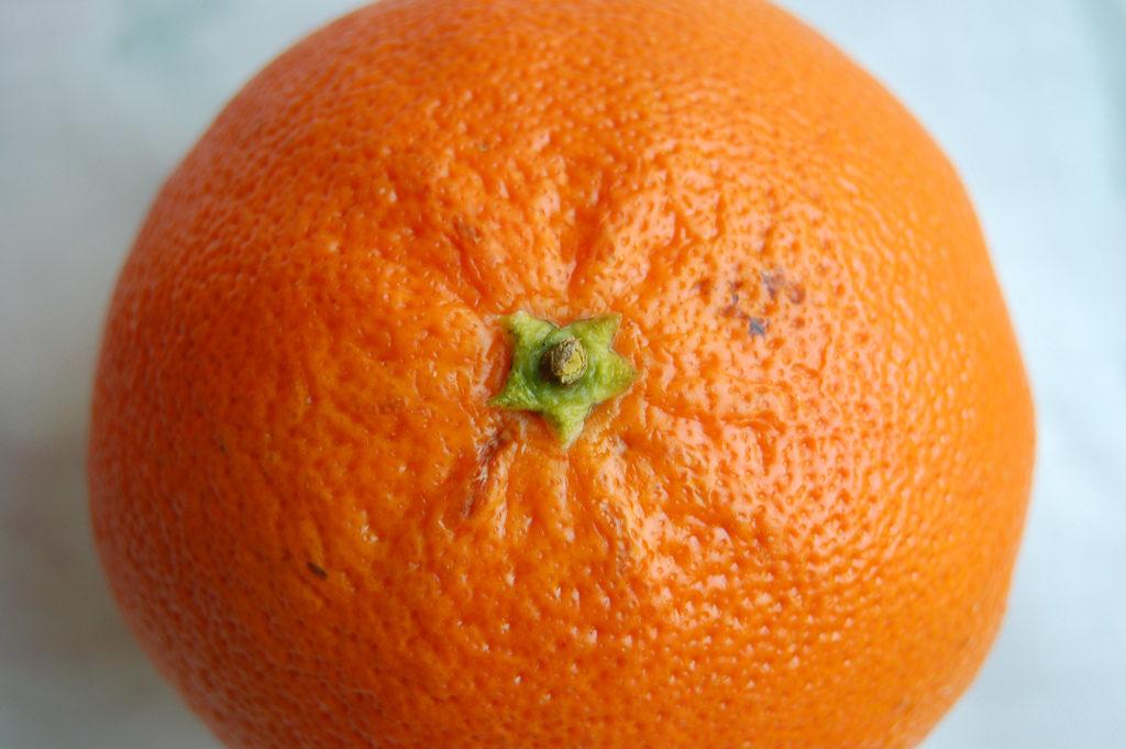 orange Photo Credit: Leonardo Aguiar (Flickr).