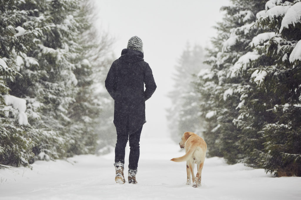 Winter Hike Photo Credit: Chalabala (iStock).