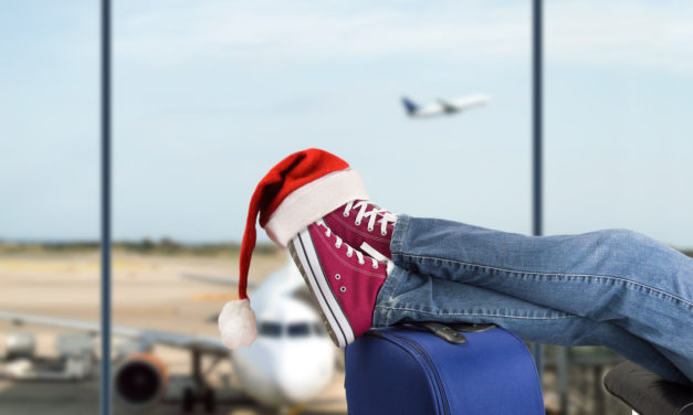 4 Survival Tips For Holiday Travel