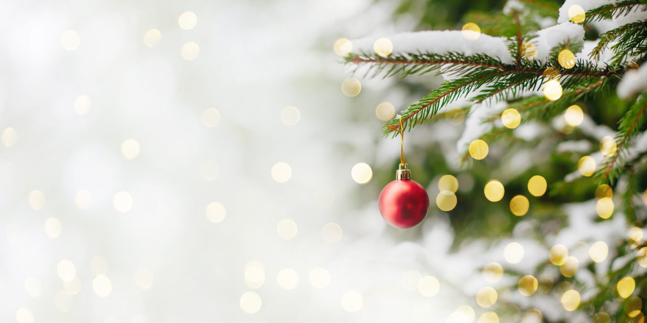 6 Simple Tips For Picking The Perfect Christmas Tree