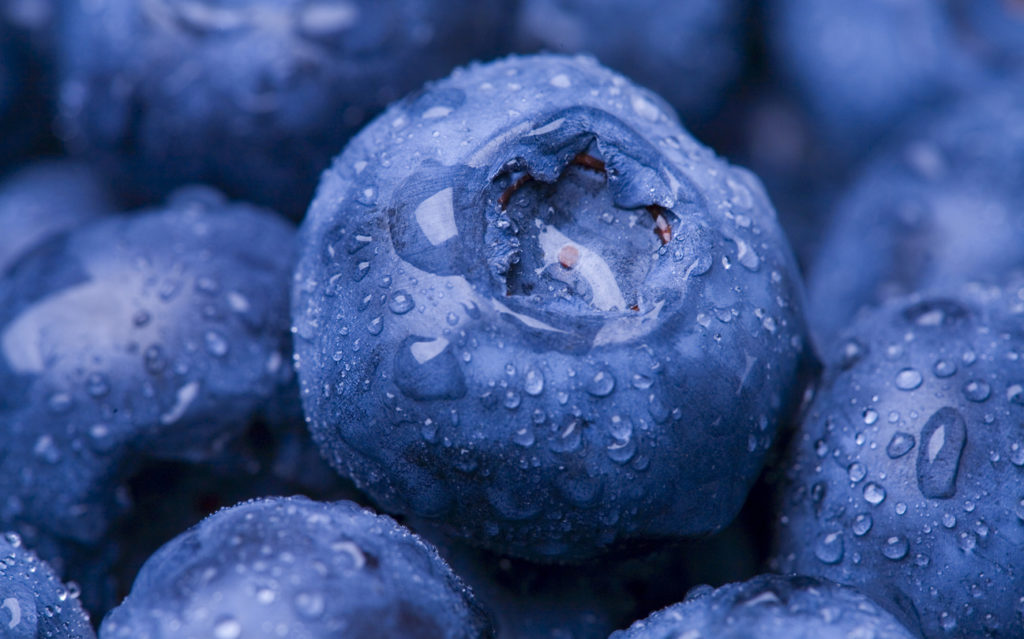 Blueberries, Photo Credit: Kativ (iStock).
