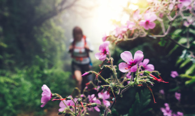 Why Nature is So Good For Your Soul